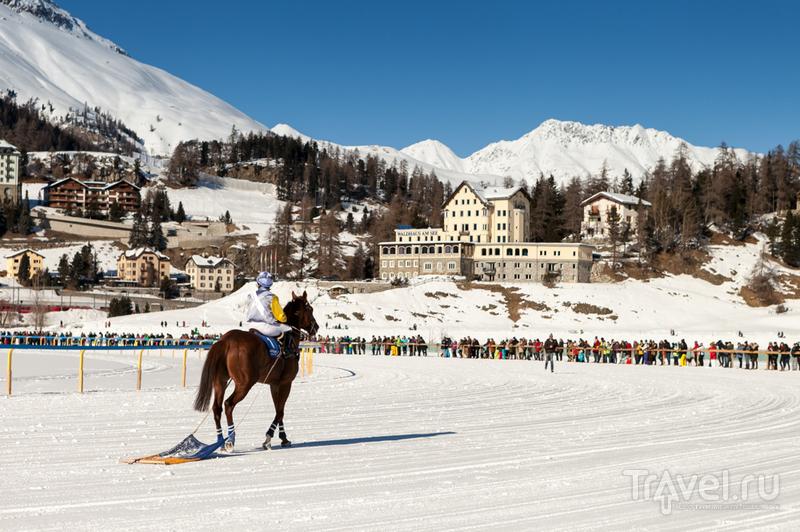 Скачки в Санкт-Морице / Фото из Швейцарии