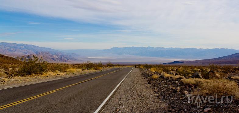 В пустыне Мохаве, США / Фото из США
