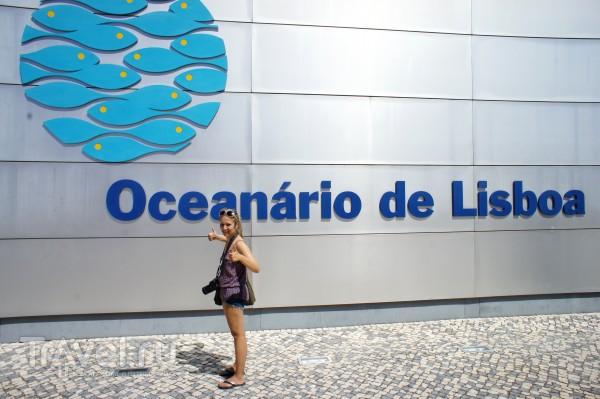 Океанарий в Лиссабоне / Португалия