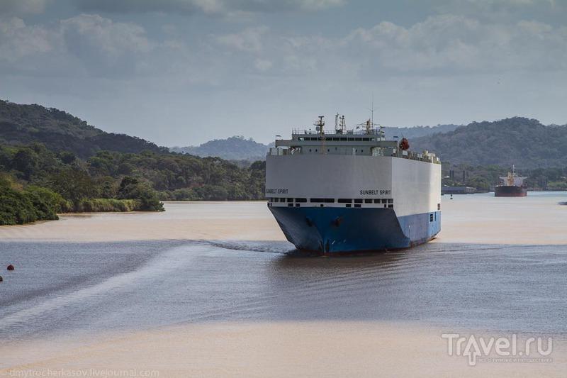 Искусственное озёро Гатун / Фото из Панамы