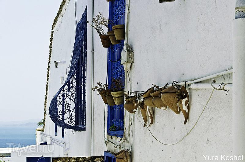 В городе Сиди-бу-Саид, Тунис / Фото из Туниса