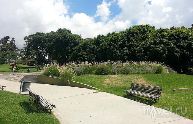 Парк в районе Реколета (Recoleta), Буэнос-Айрес, Аргентина / Фото из Аргентины
