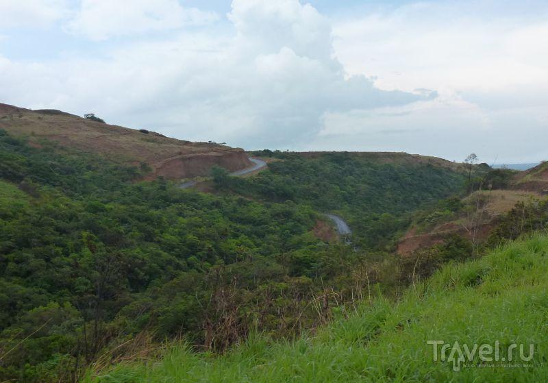 Горы, сосны и куры в El Valle de Anton / Панама