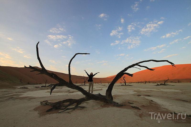 На диком западе Намибии. Соссусвлей и Свакопмунд / Намибия