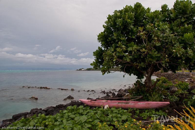 На острове Саваий, Самоа / Фото с Западного Самоа