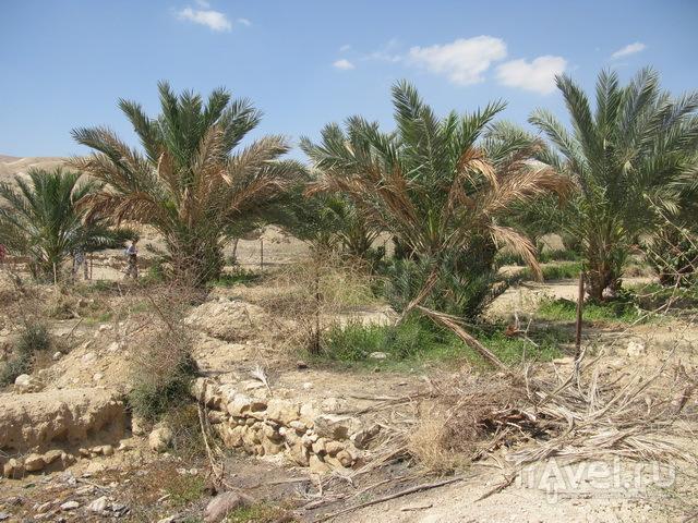 Дворцы Иерихона / Палестина