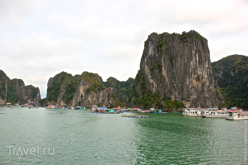 Бухта Халонг / Фото из Вьетнама