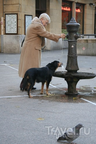 Народ без родственников / Испания