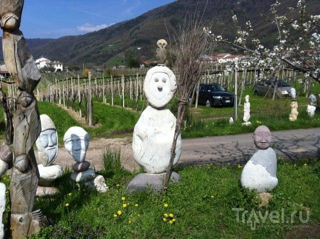 Primavera del prosecco superiore. Весенний фестиваль просекко / Италия