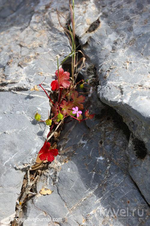 В пещеру Зевса / Греция