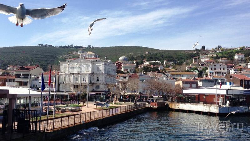 Принцевы острова: райский уголок в Мраморном море / Турция