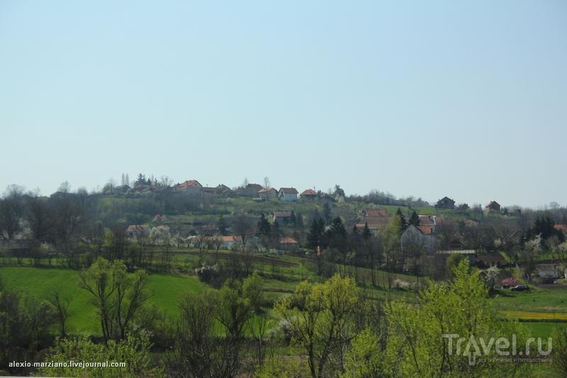 Сербия. Впервые впечатления / Сербия