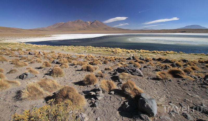 Лагуна Canapa, Боливия / Фото из Боливии