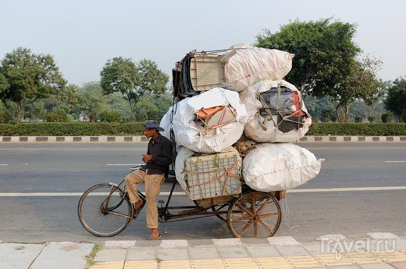 """Проект """"Гималайский индюк"""". Пешком по Старому Дели / Фото из Индии"""