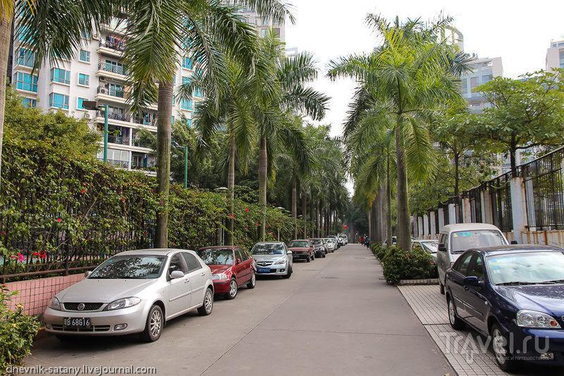 В городе Шэньчжэнь, Китай / Фото из Китая