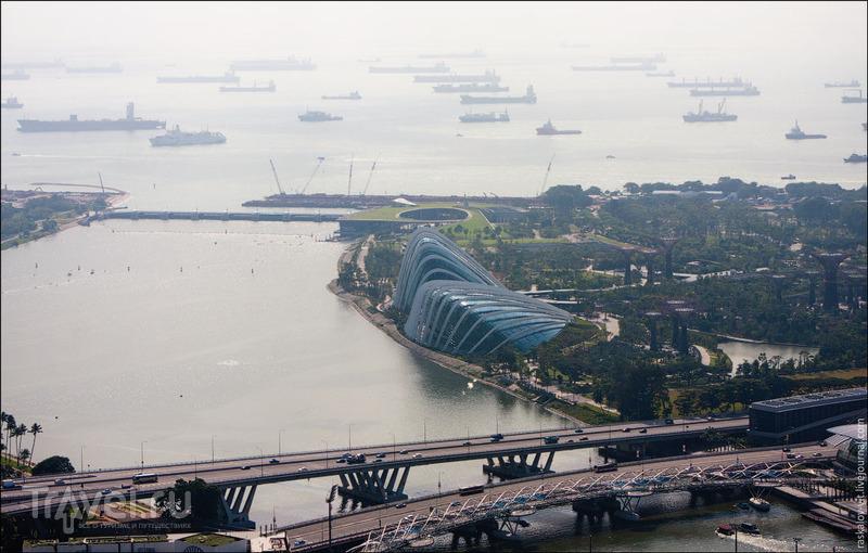 Оранжерея Cloud Forest, Сингапур / Фото из Сингапура