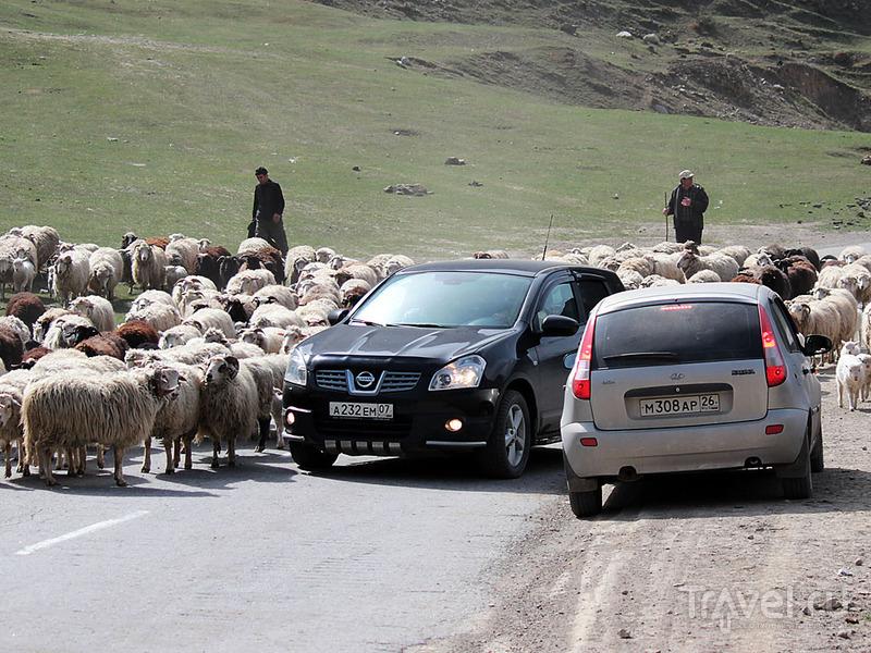 Северный Кавказ весной / Россия