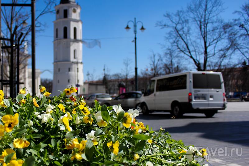Гуляя по весеннему Вильнюсу / Литва