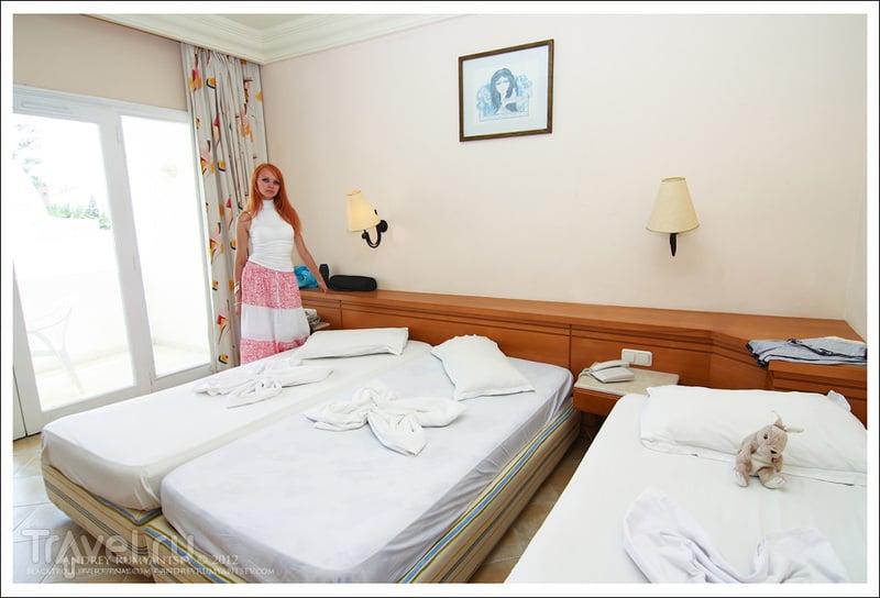 новости отеля дельфин тунис монастир