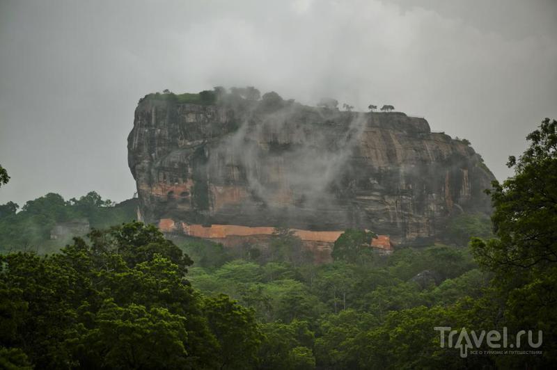 Сигирия, Шри-Ланка / Фото со Шри-Ланки