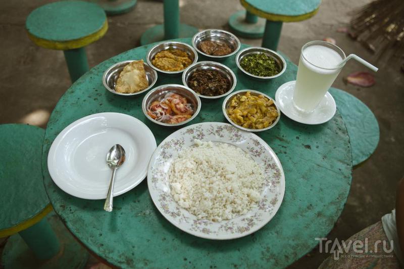 На Шри-Ланку с малышом или без / Фото со Шри-Ланки