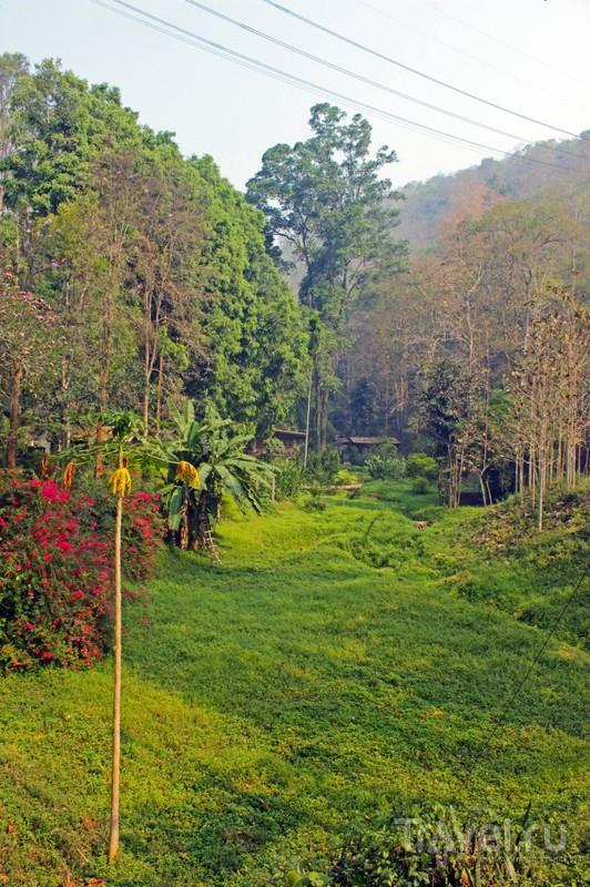 Поездка по Северному Таиланду: Chiang Mai - Chiang Dao - Doi Angkhang - Mae Salong / Таиланд