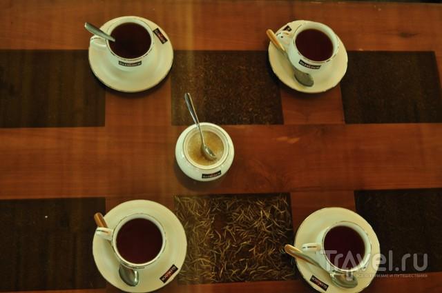 голубой чай таиланд отзывы