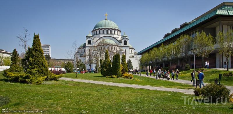 Храма Святого Саввы в Белграде, Сербия / Фото из Сербии