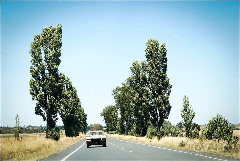 Австралийская столица - Canberra / Фото из Австралии