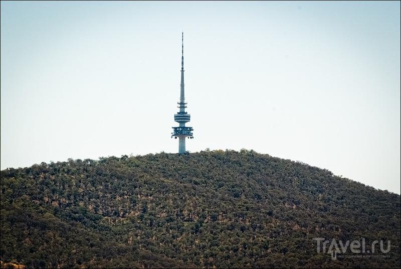 Башня Чёрной Горы в Канберре, Австралия / Фото из Австралии