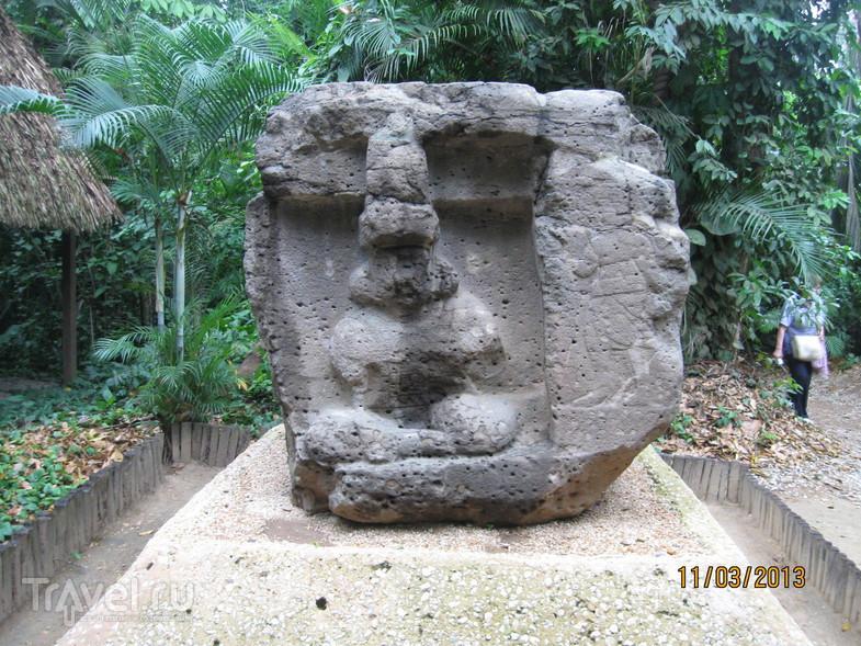Музей Ла Вента / Мексика