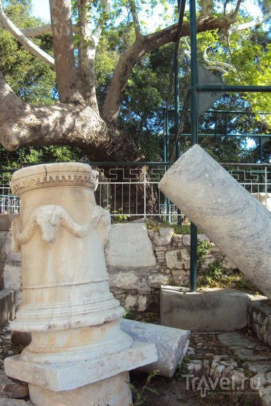 Город Кос, фотопрогулка / Греция