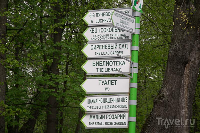 Хотя мы и не школьники, пойдем гулять в Сокольники! / Россия