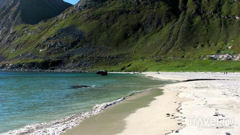 Август на Лофотенском архипелаге / Фото из Норвегии
