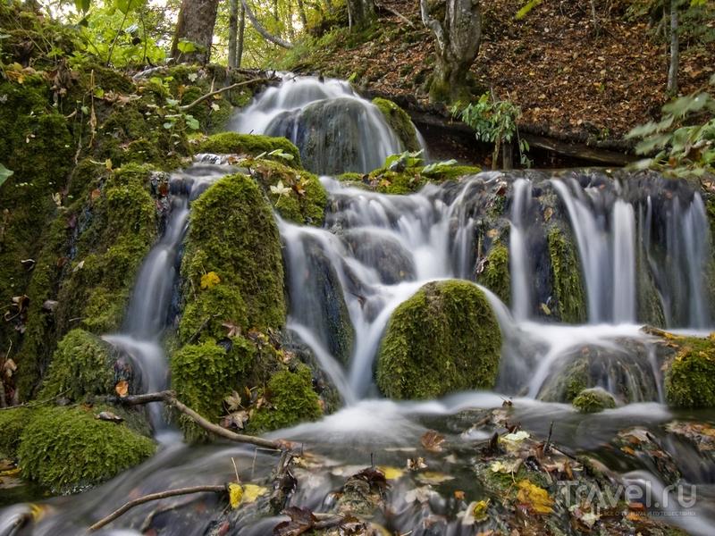 Пенистые водопады национального парка затеряны в лесах и чащах, Хорватия / Хорватия