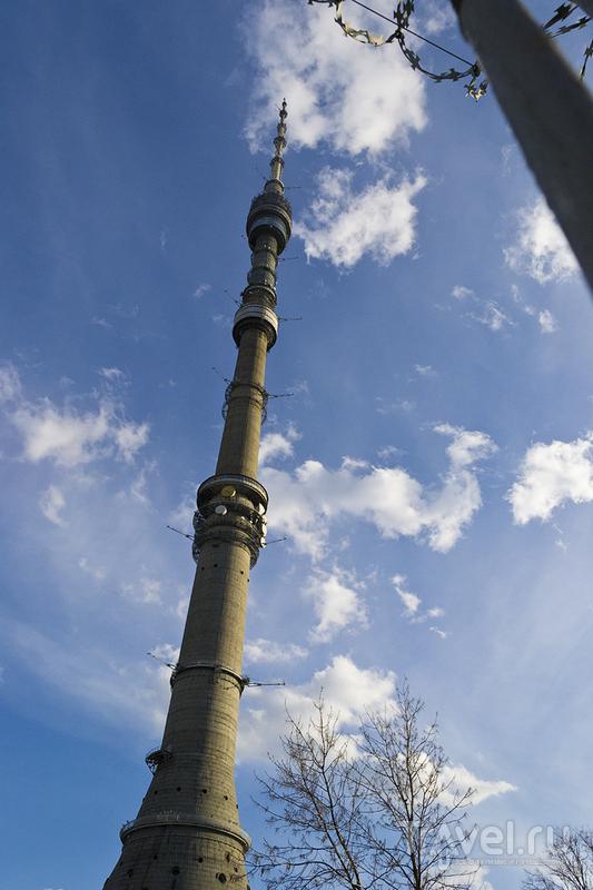 Останкинская башня в Москве, Россия / Фото из России