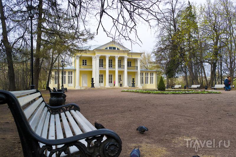 Нескучный сад в Москве, Россия / Фото из России