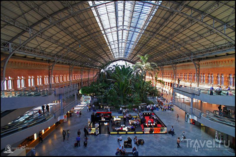 Вокзал Аточа (исп. Estación de Atocha) в Мадриде, Испания / Фото из Испании