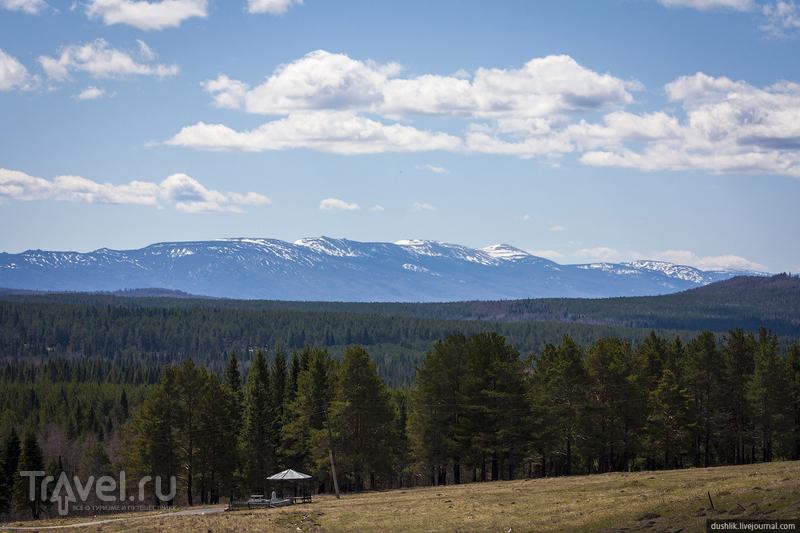 Хребет Большая Сука Челябинской области, Россия / Фото из России