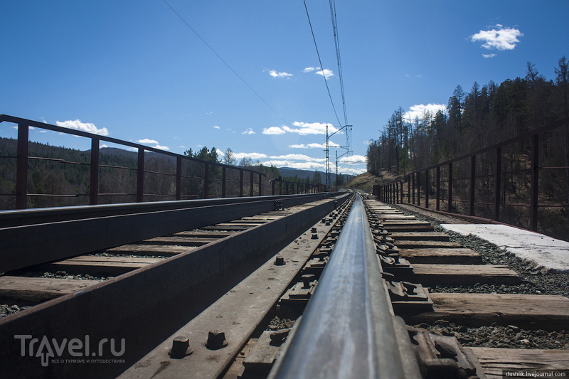 Галопом по Саткинским тропам / Фото из России