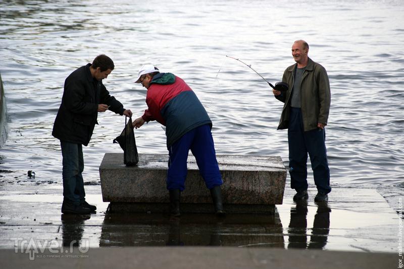 На реке Неве в Петербурге, Россия / Фото из России