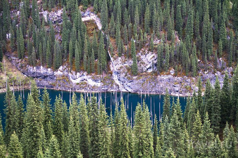 Озеро Каинды, Казахстан / Фото из Казахстана