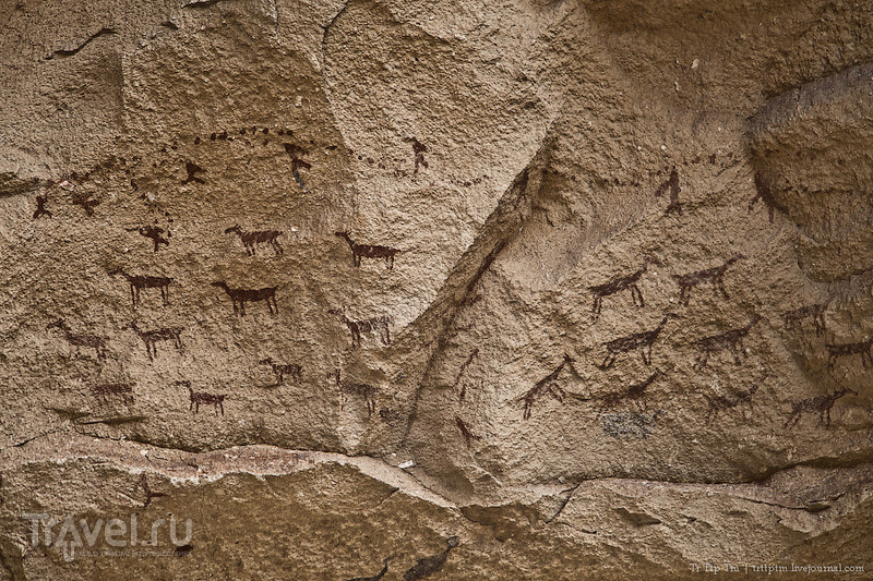 Отпечатки древних ладоней и степи аргентинской Патагонии / Фото из Аргентины