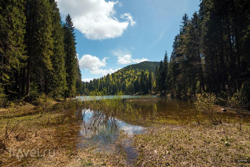 Озеро Синевир, Украина / Фото с Украины