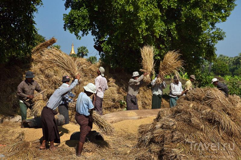 Бирма. Мандалай. Рыбаки и крестьяне / Фото из Мьянмы