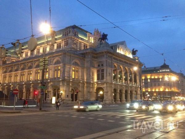 Вена. Общие впечатления / Австрия