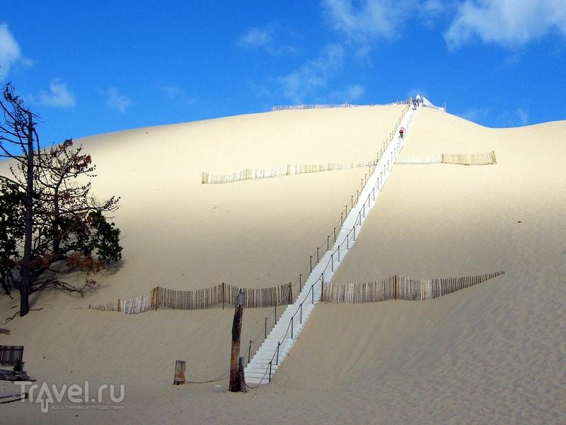 Подняться на вершину дюны Пила можно по лестнице, Франция / Франция