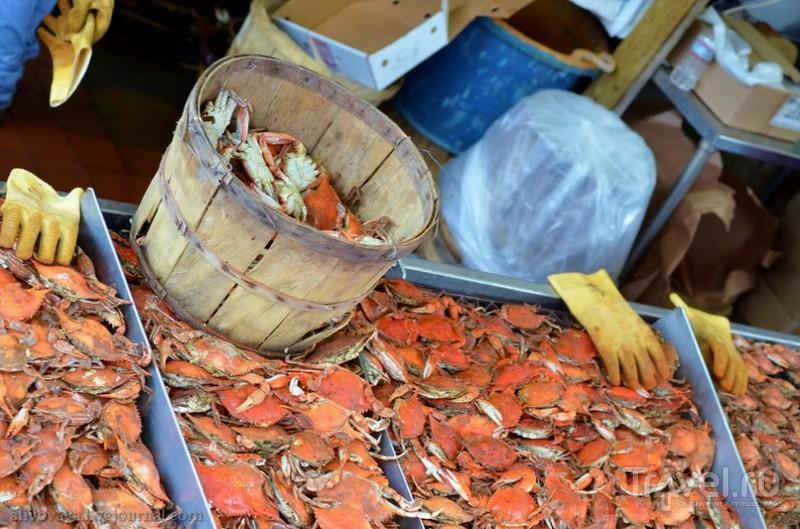 На рыбном рынке в Вашингтоне, США / Фото из США