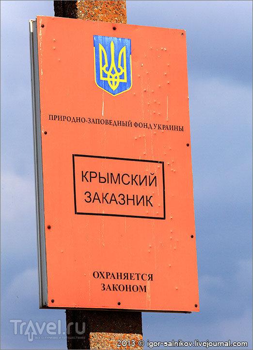 Вокруг Донузлава / Фото с Украины