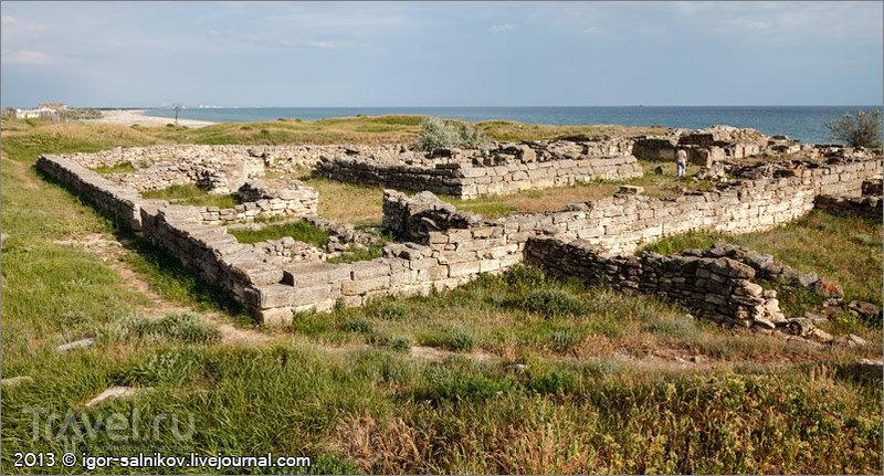 Раскопки греко-скифского городища Беляус, Украина / Фото с Украины